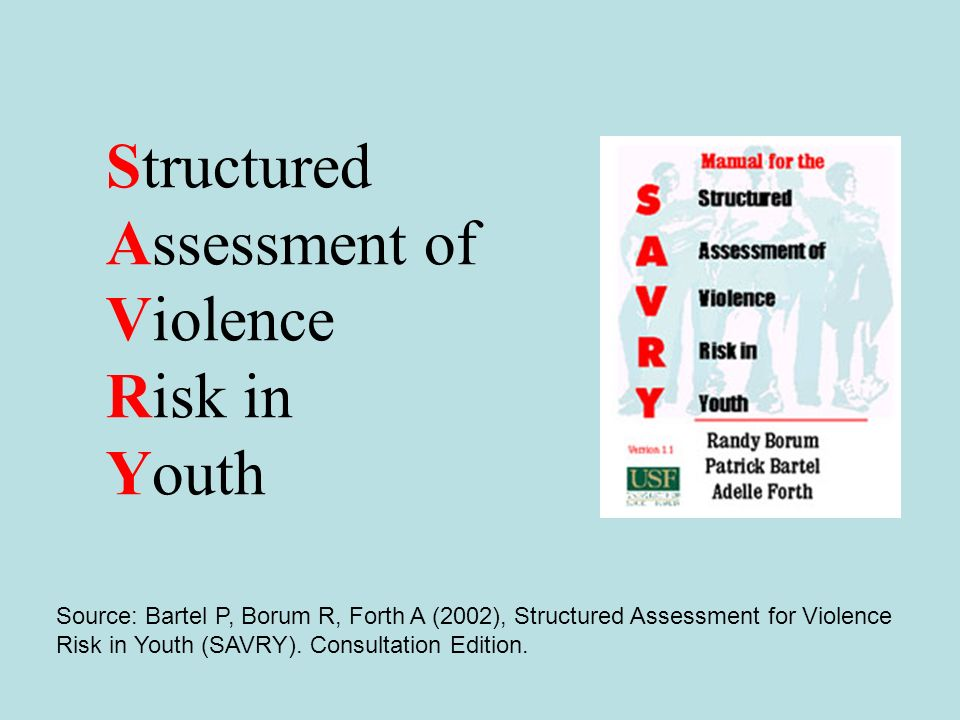 Structured Assessment of Violence Risk in Youth