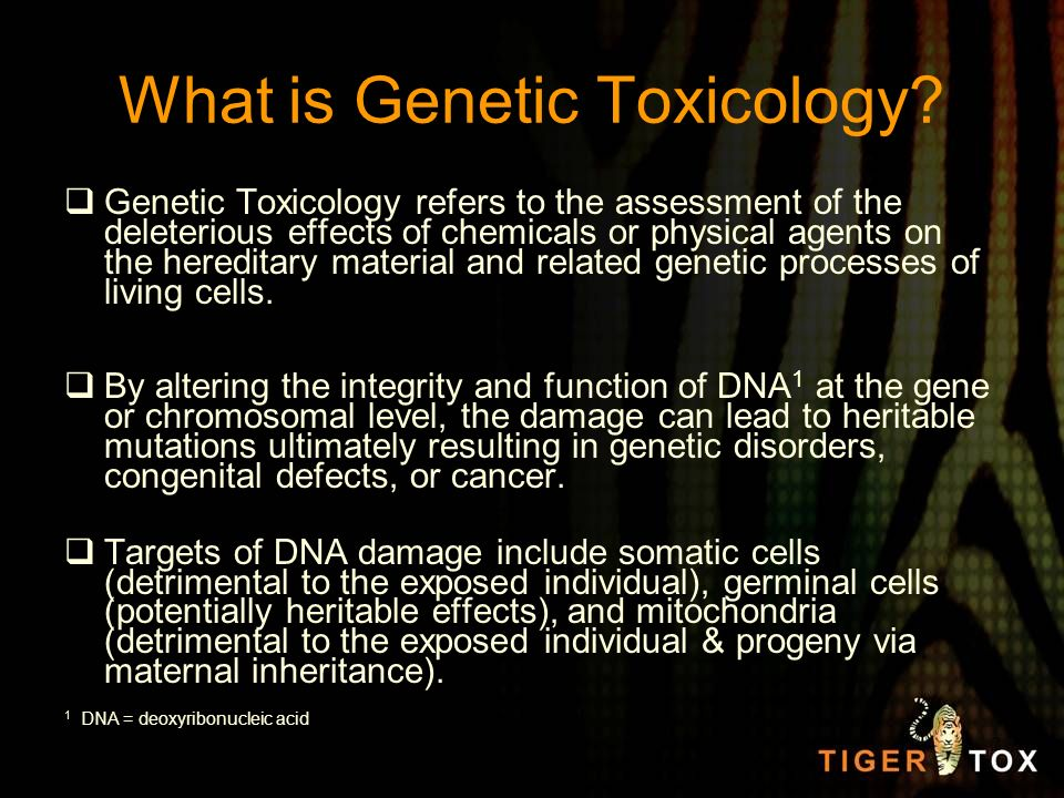 What is Genetic Toxicology