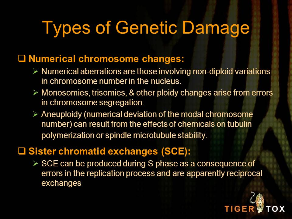 Types of Genetic Damage