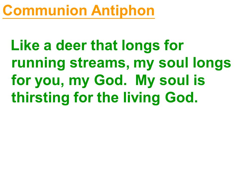 Communion Antiphon Like a deer that longs for running streams, my soul longs for you, my God.