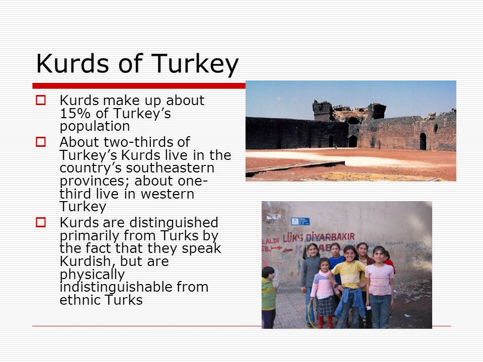 Kurds of Turkey Kurds make up about 15% of Turkey's population