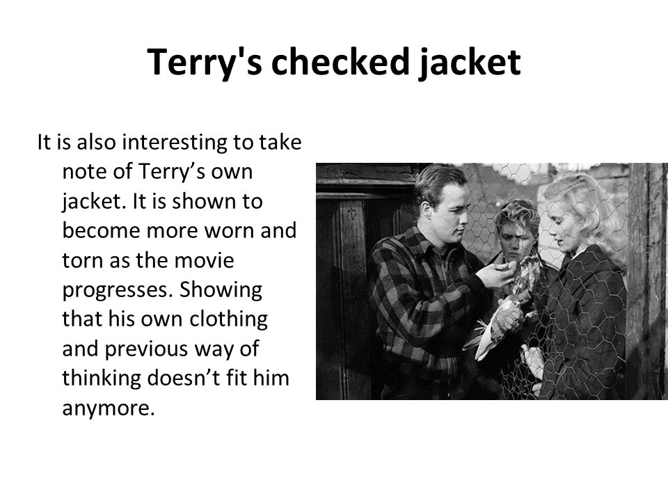 Terry s checked jacket
