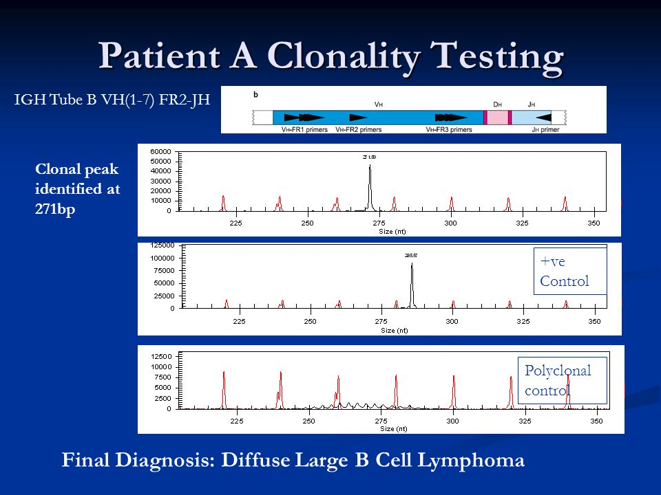Patient A Clonality Testing