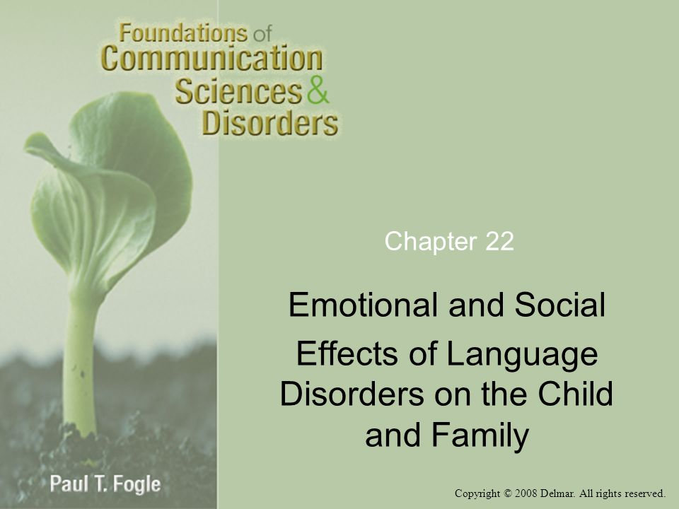 Effects of Language Disorders on the Child and Family