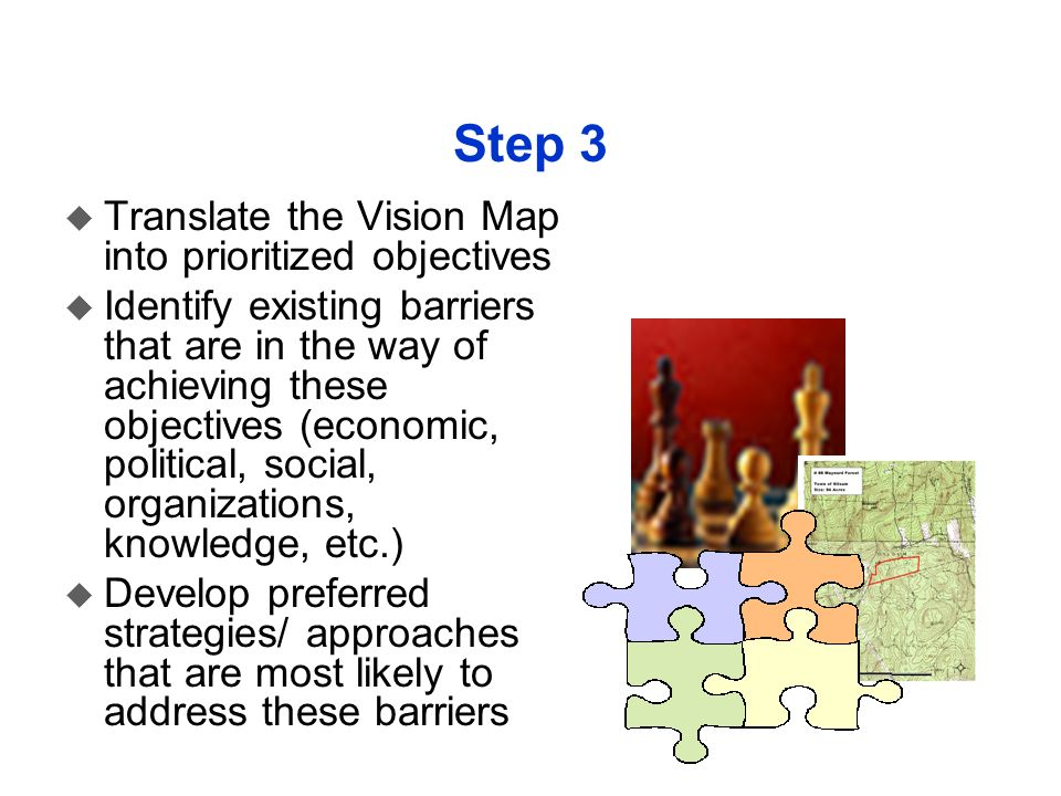 Step 3 Translate the Vision Map into prioritized objectives