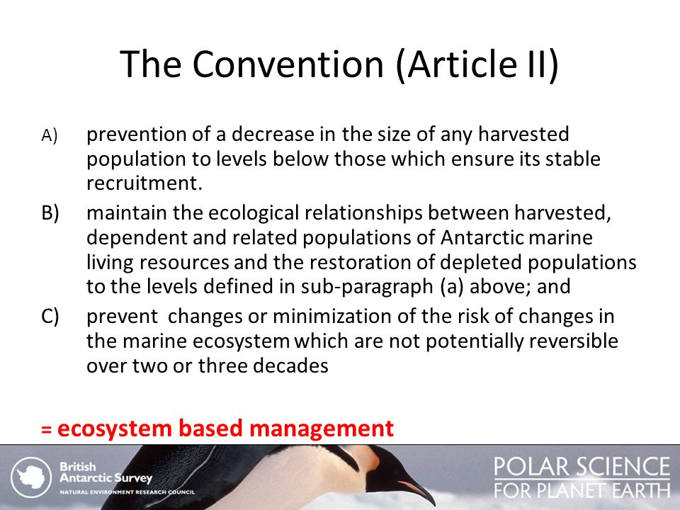 The Convention (Article II)