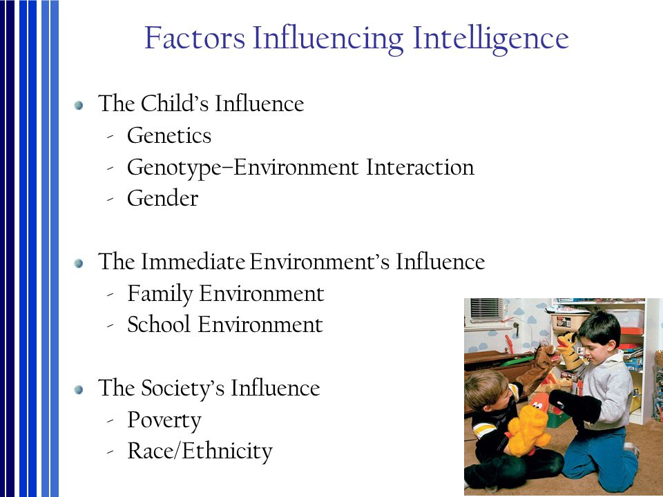 environmental factors on intelligence