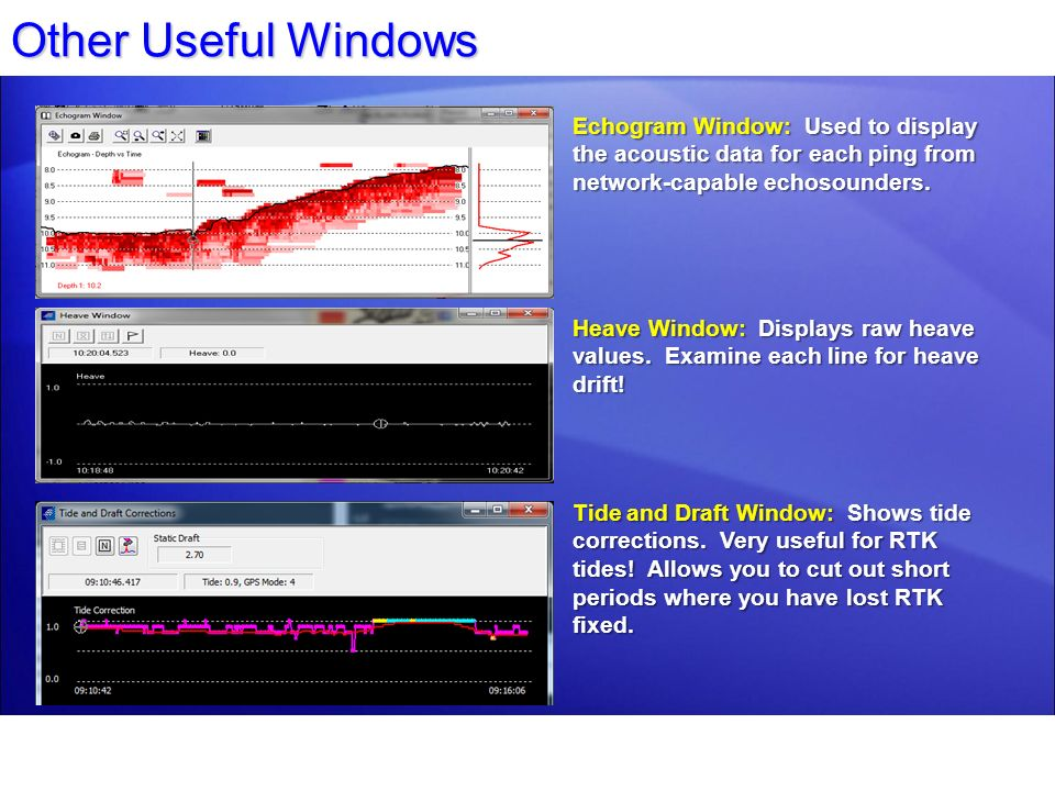 Other Useful Windows Echogram Window: Used to display the acoustic data for each ping from network-capable echosounders.