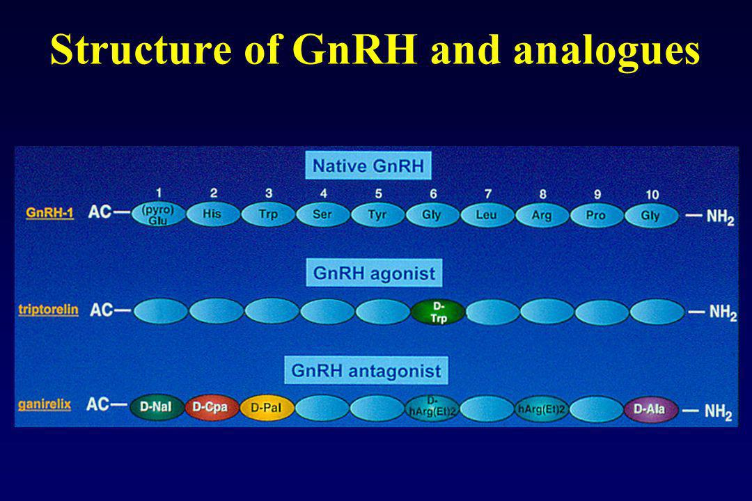 Structure of GnRH and analogues