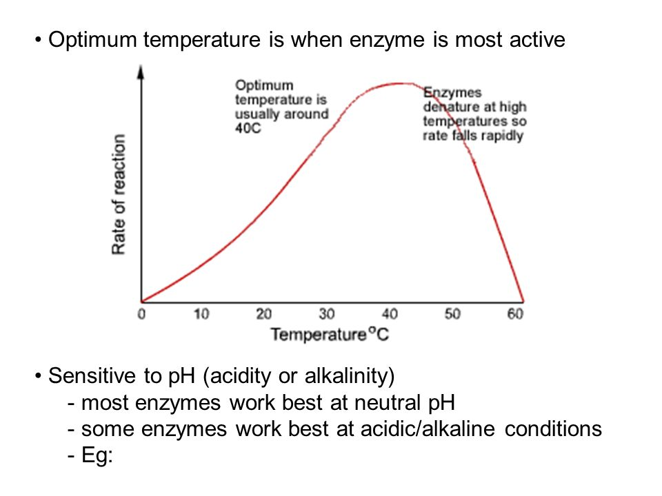 Optimum temperature is when enzyme is most active