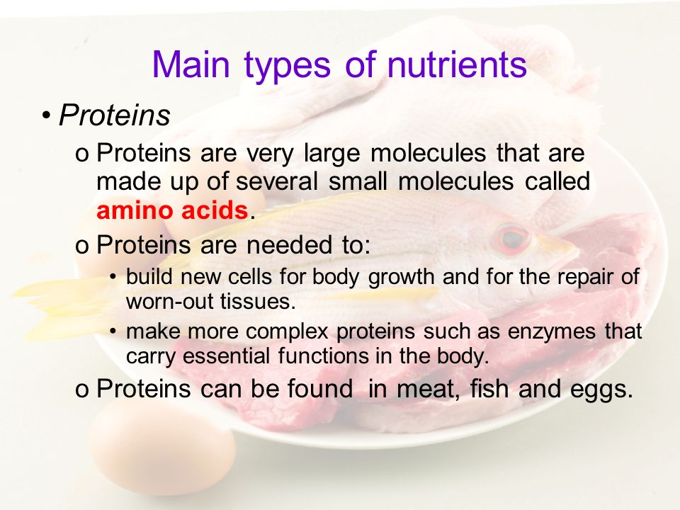 Main types of nutrients