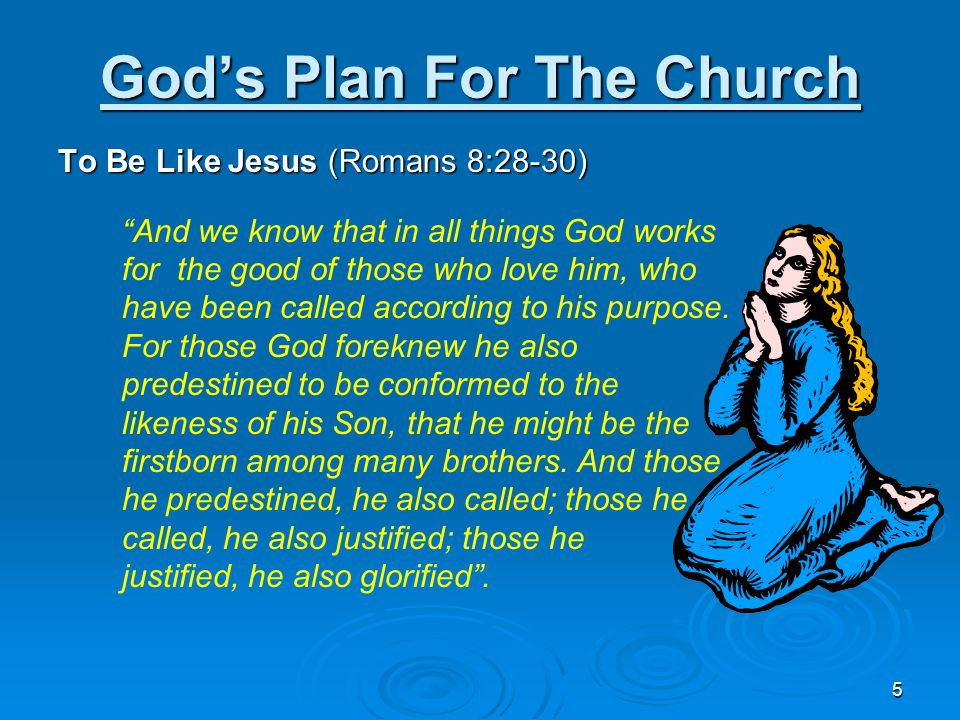 God's Plan For The Church