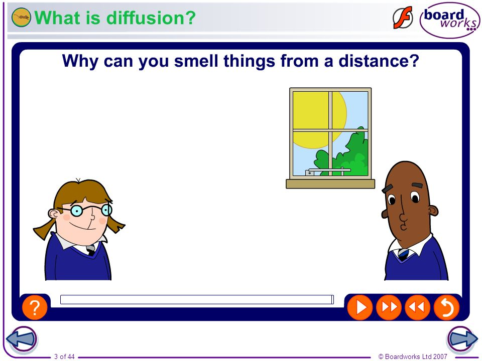 What is diffusion Boardworks GCSE Additional Science: Biology