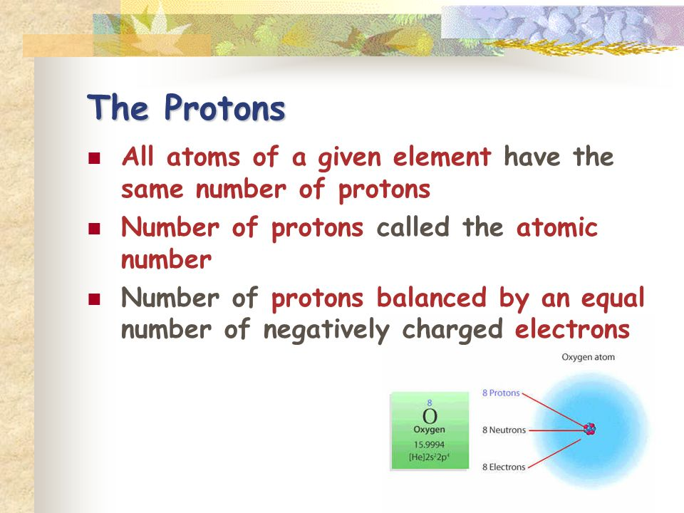 The Protons All atoms of a given element have the same number of protons. Number of protons called the atomic number.