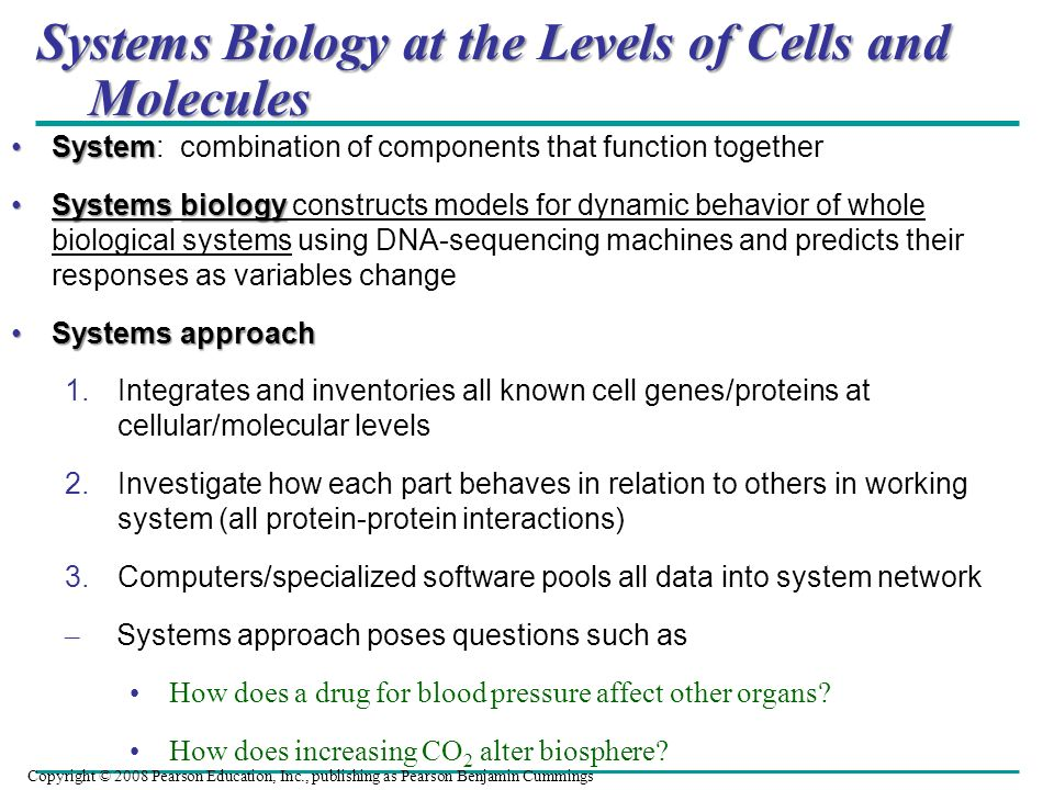 Systems Biology at the Levels of Cells and Molecules