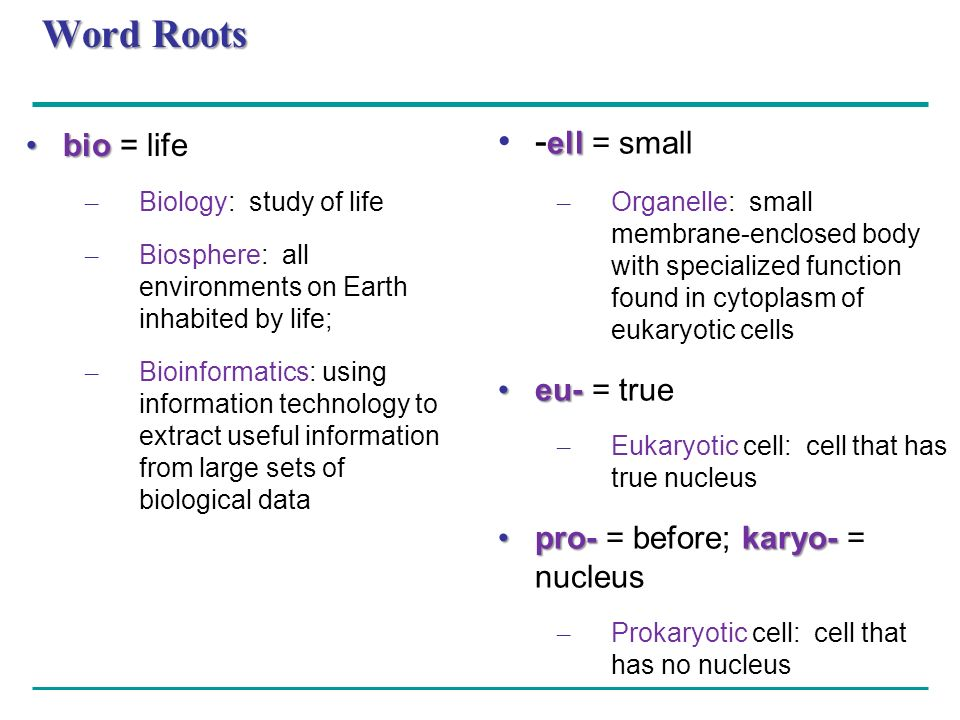Word Roots -ell = small bio = life eu- = true