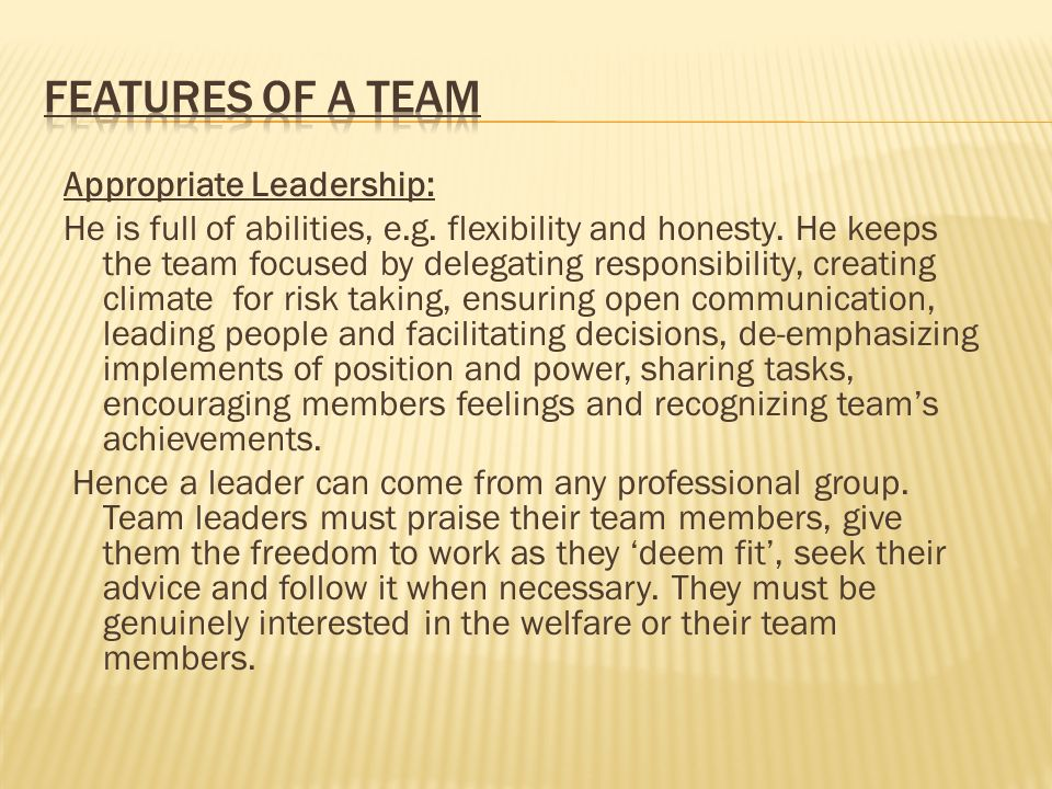 Features of a Team