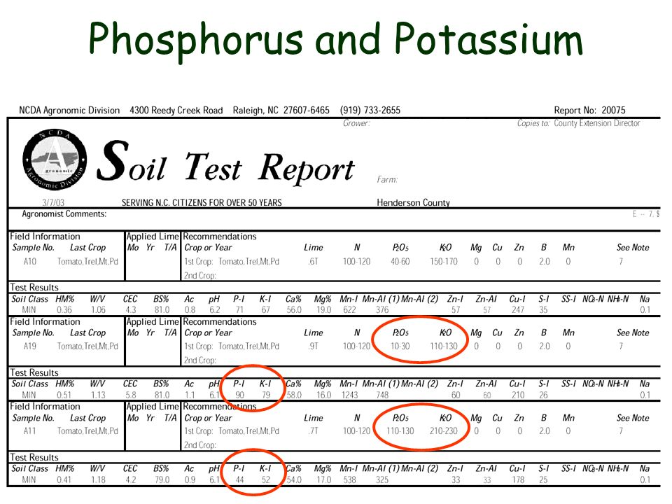 Phosphorus and Potassium