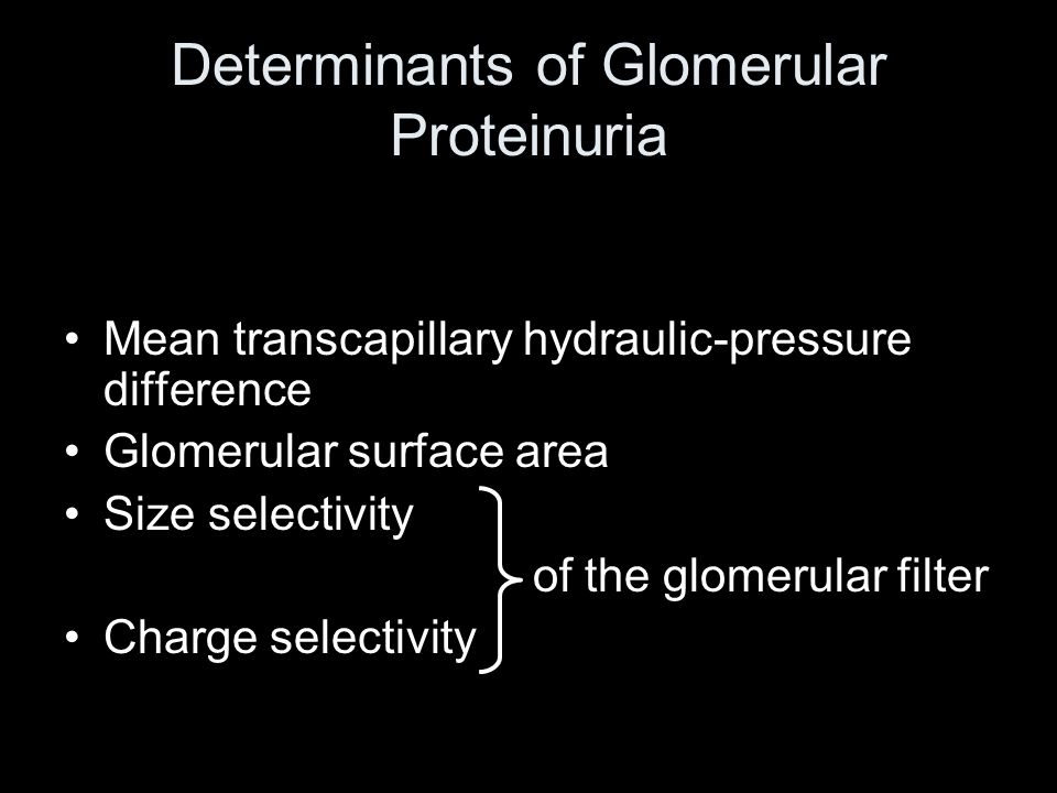 Determinants of Glomerular Proteinuria