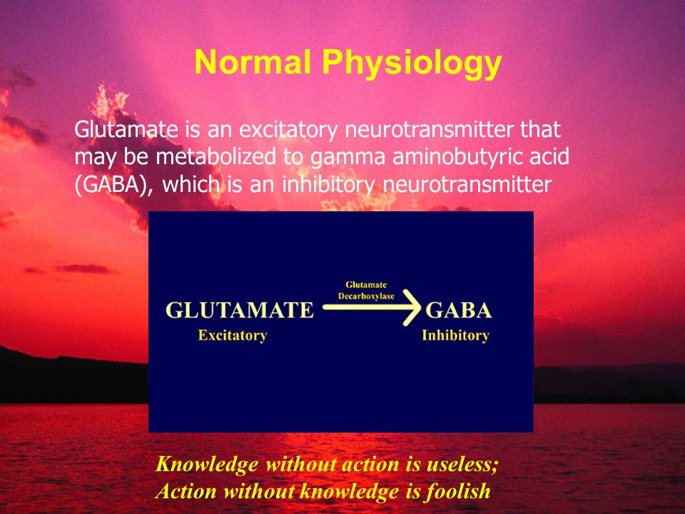 Normal Physiology Glutamate is an excitatory neurotransmitter that