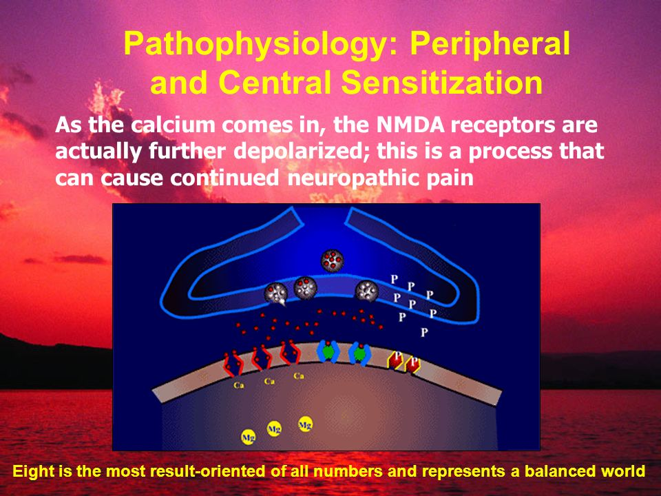 Pathophysiology: Peripheral and Central Sensitization