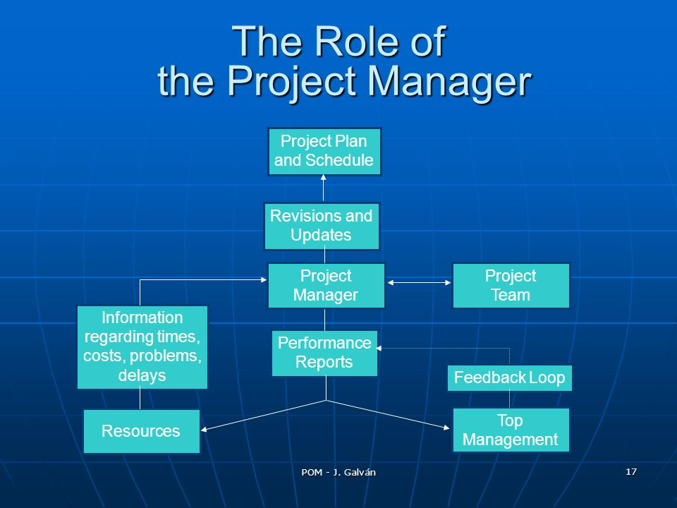 The Role of the Project Manager