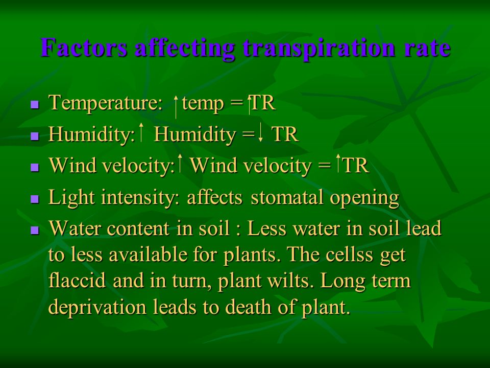 Factors affecting transpiration rate