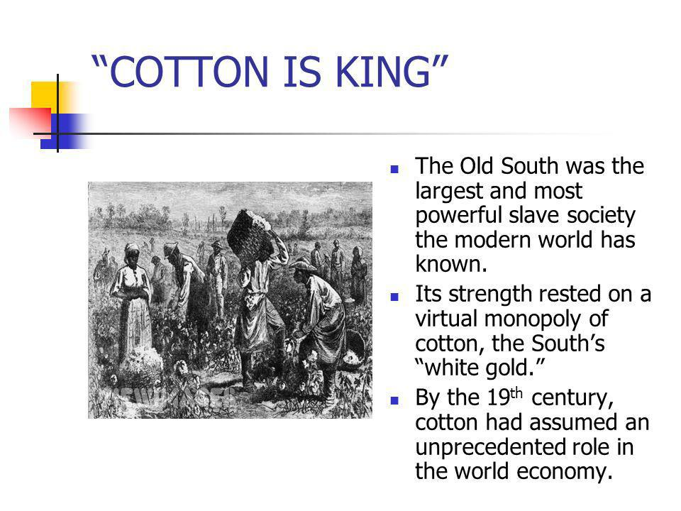COTTON IS KING The Old South was the largest and most powerful slave society the modern world has known.