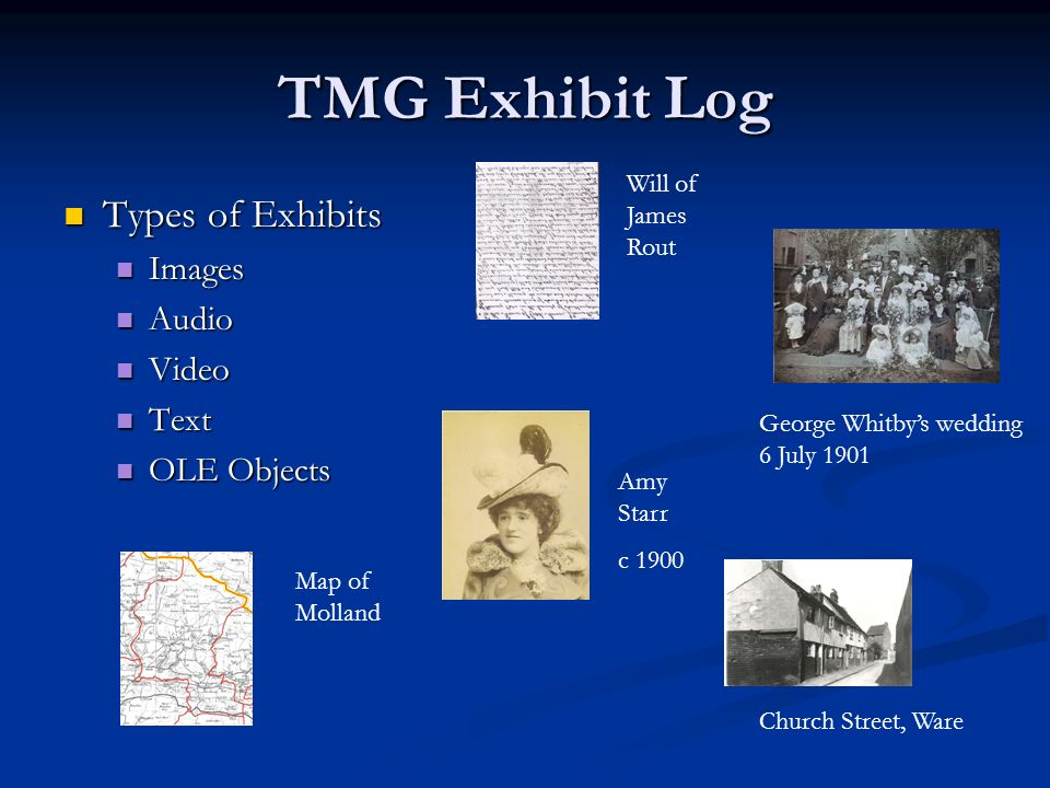 TMG Exhibit Log Types of Exhibits Images Audio Video Text OLE Objects