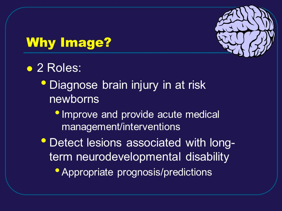 Why Image 2 Roles: Diagnose brain injury in at risk newborns