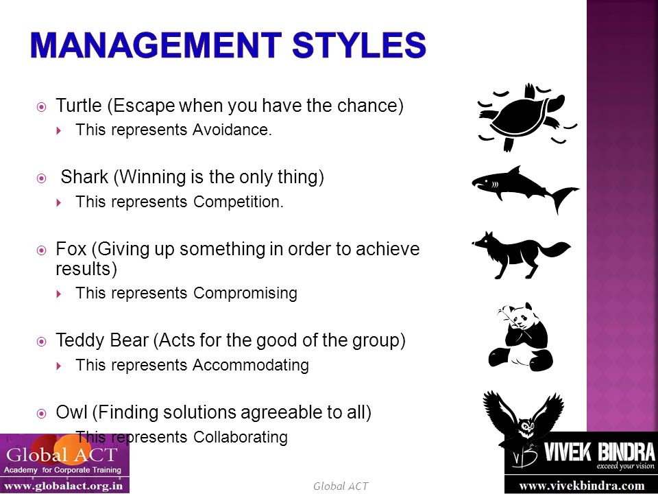 Management Styles Turtle (Escape when you have the chance)