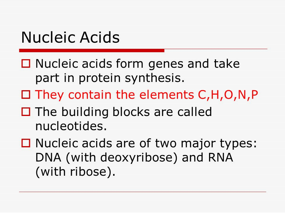 Nucleic Acids Nucleic acids form genes and take part in protein synthesis. They contain the elements C,H,O,N,P.