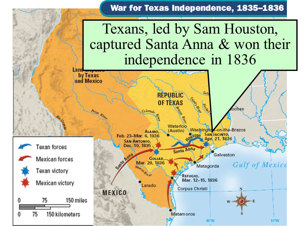 Texans, led by Sam Houston, captured Santa Anna & won their independence in 1836