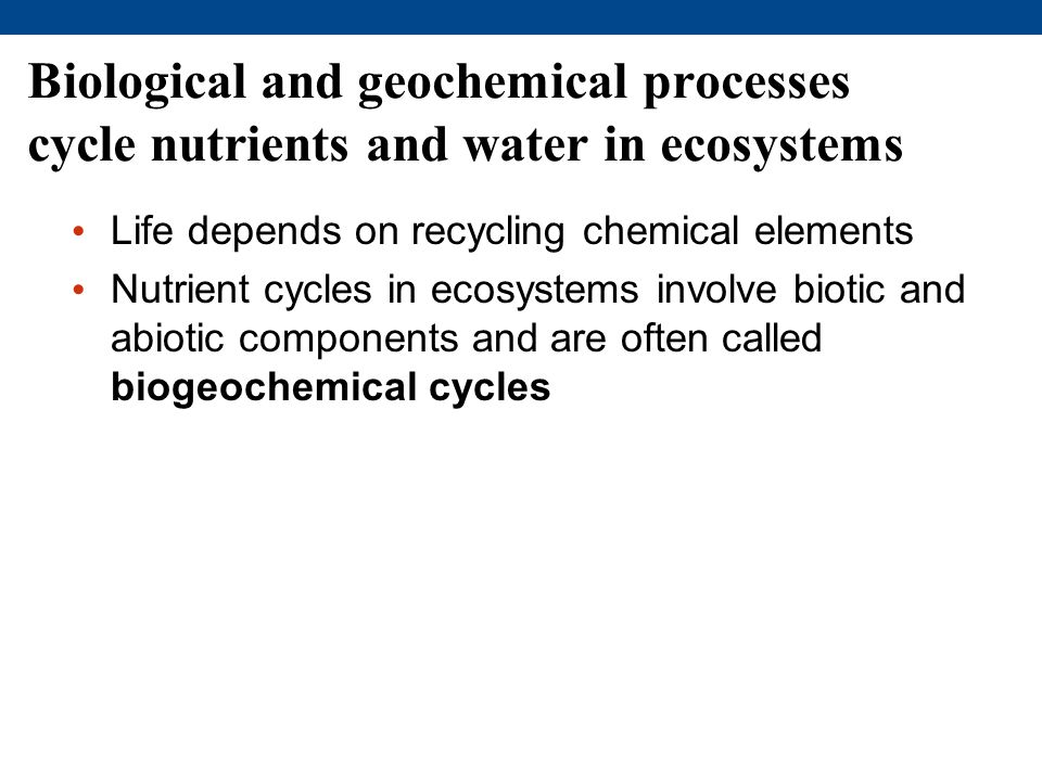 Biological and geochemical processes cycle nutrients and water in ecosystems