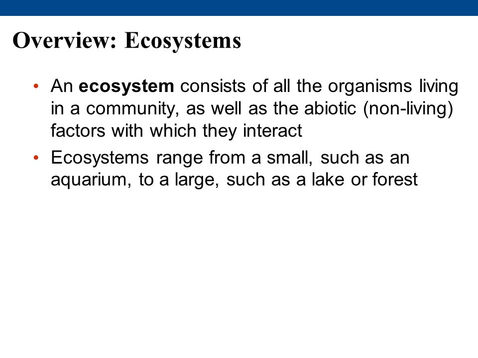Overview: Ecosystems