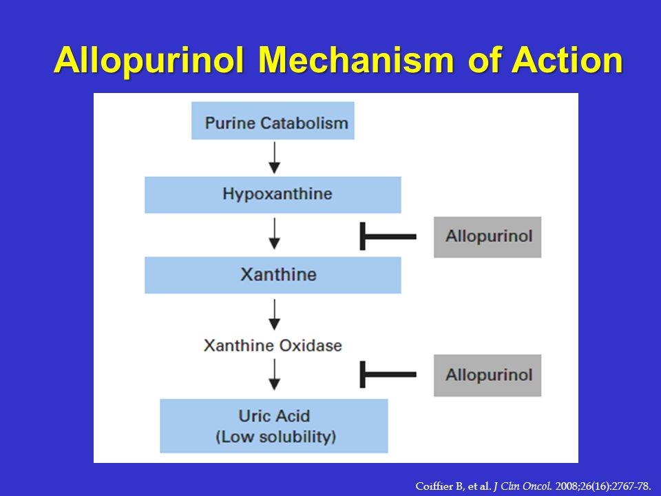 Allopurinol Mechanism of Action