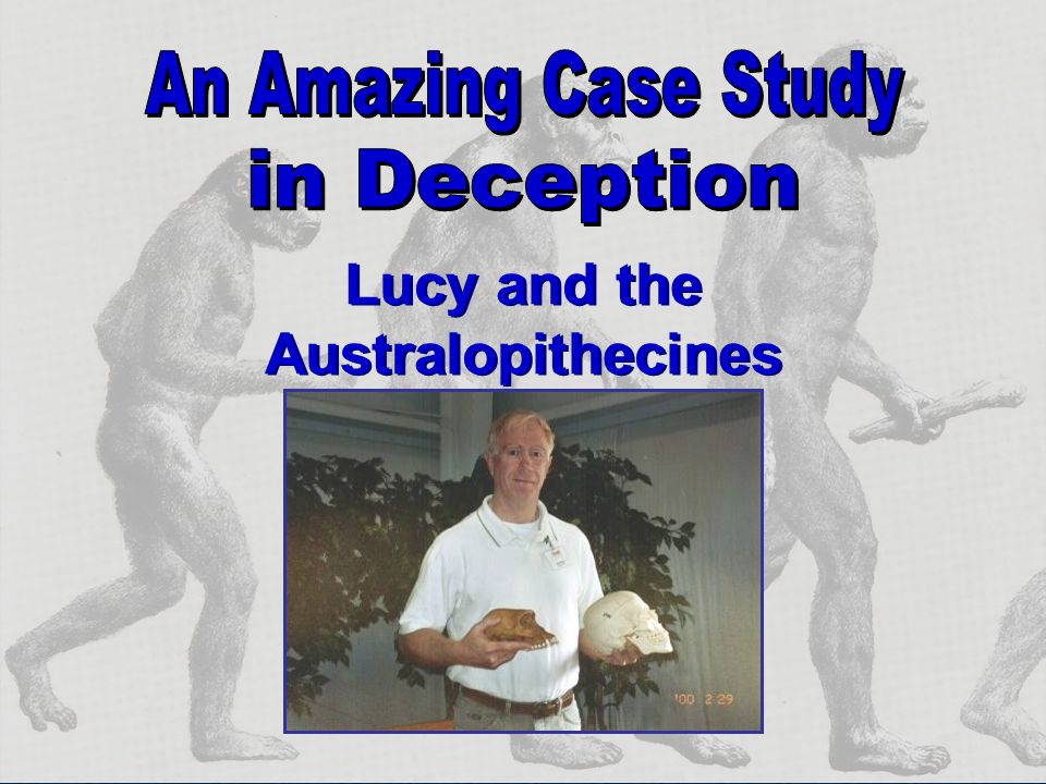Lucy and the Australopithecines