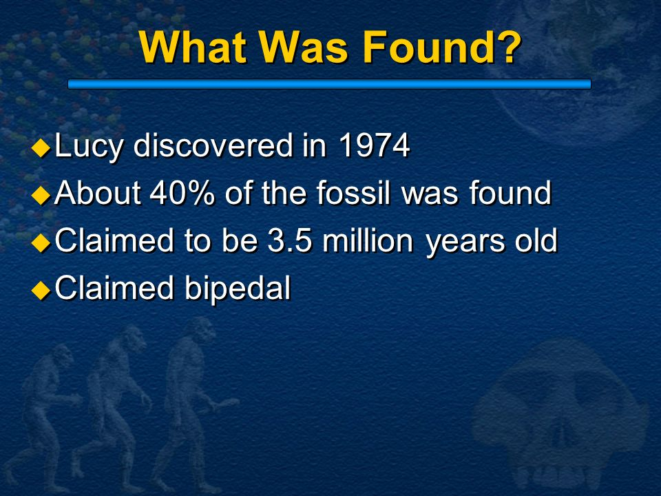 What Was Found Lucy discovered in 1974