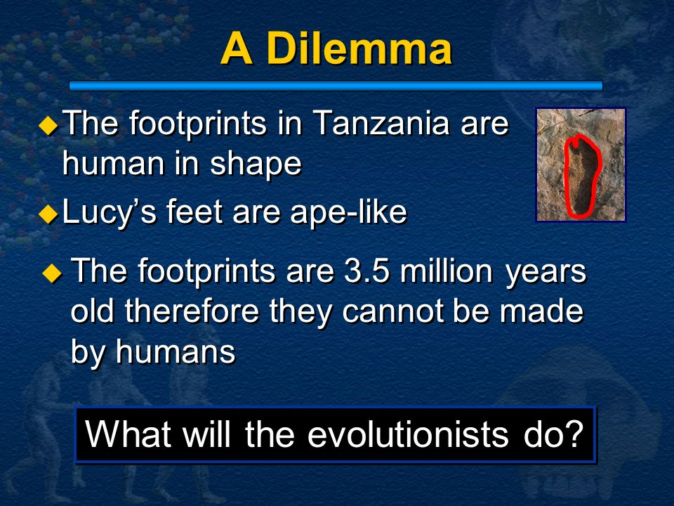 What will the evolutionists do