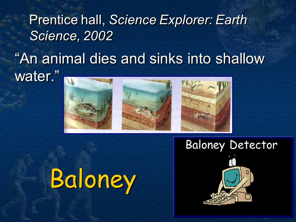 Baloney An animal dies and sinks into shallow water.