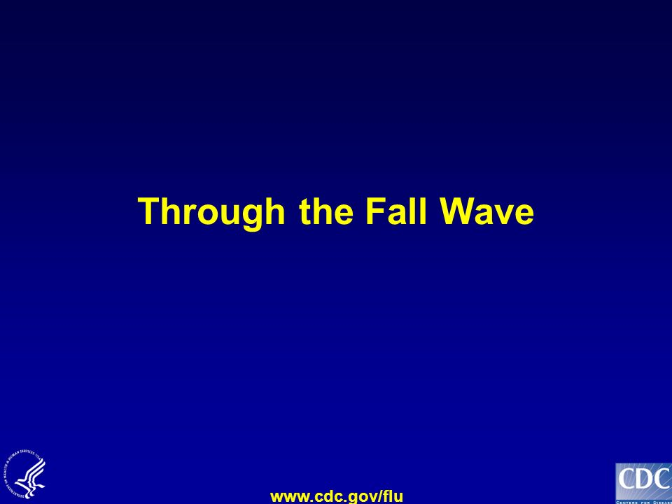 Through the Fall Wave