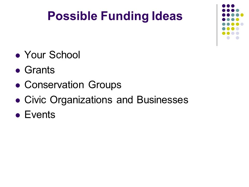 Possible Funding Ideas