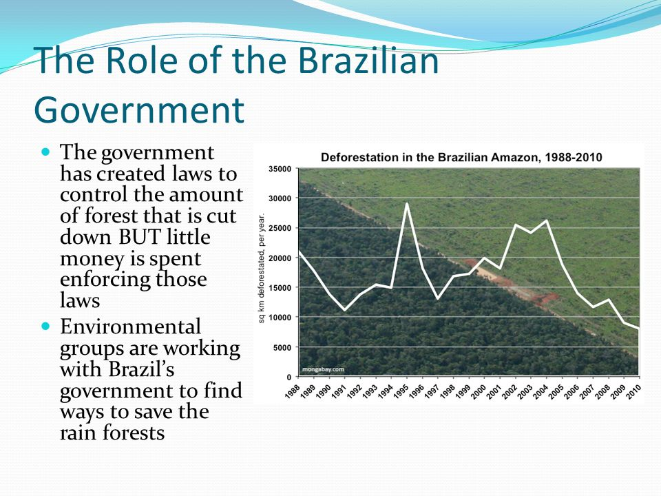 The Role of the Brazilian Government