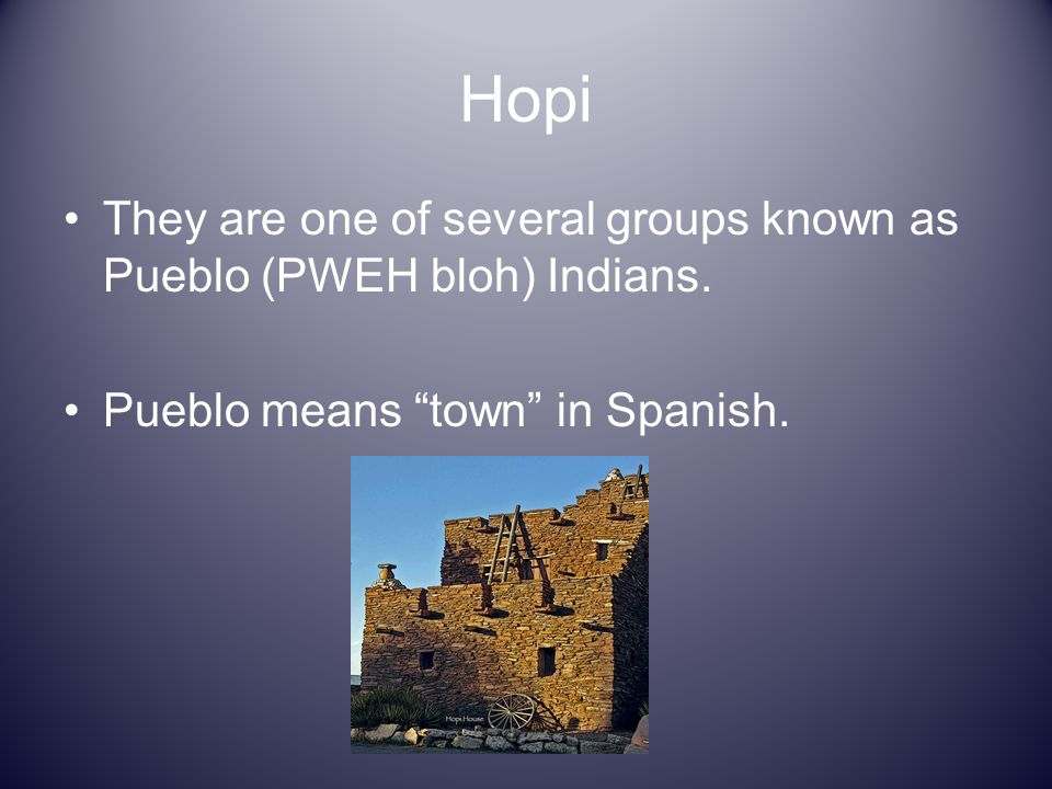 Hopi They are one of several groups known as Pueblo (PWEH bloh) Indians.