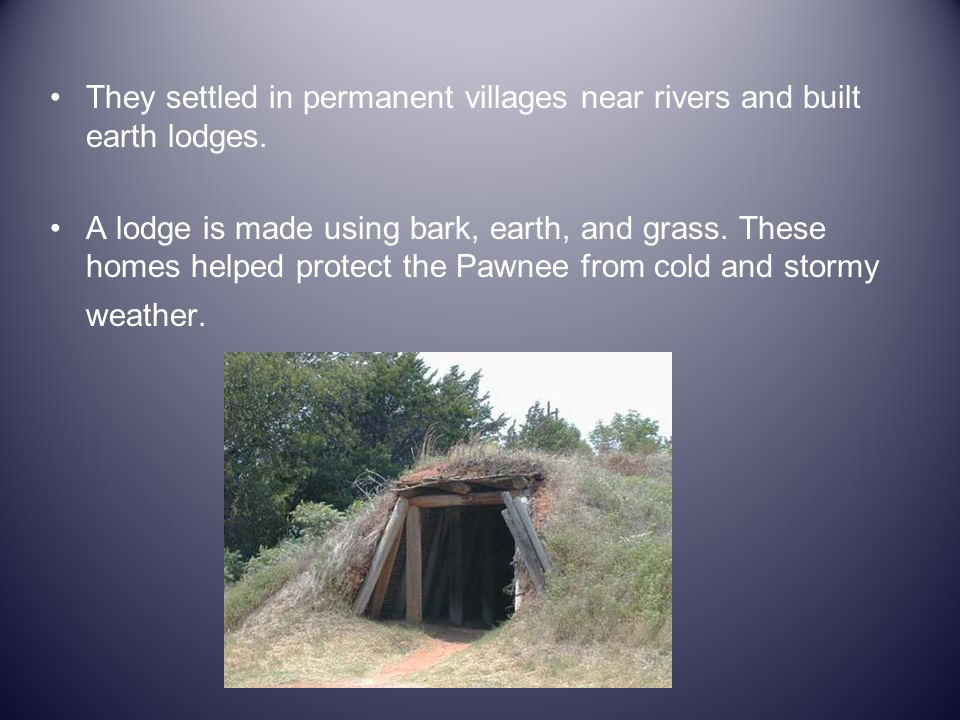 They settled in permanent villages near rivers and built earth lodges.