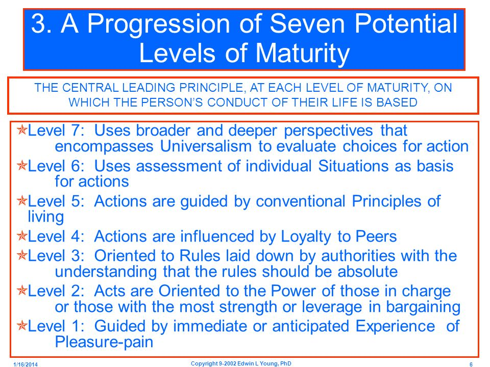 3. A Progression of Seven Potential Levels of Maturity