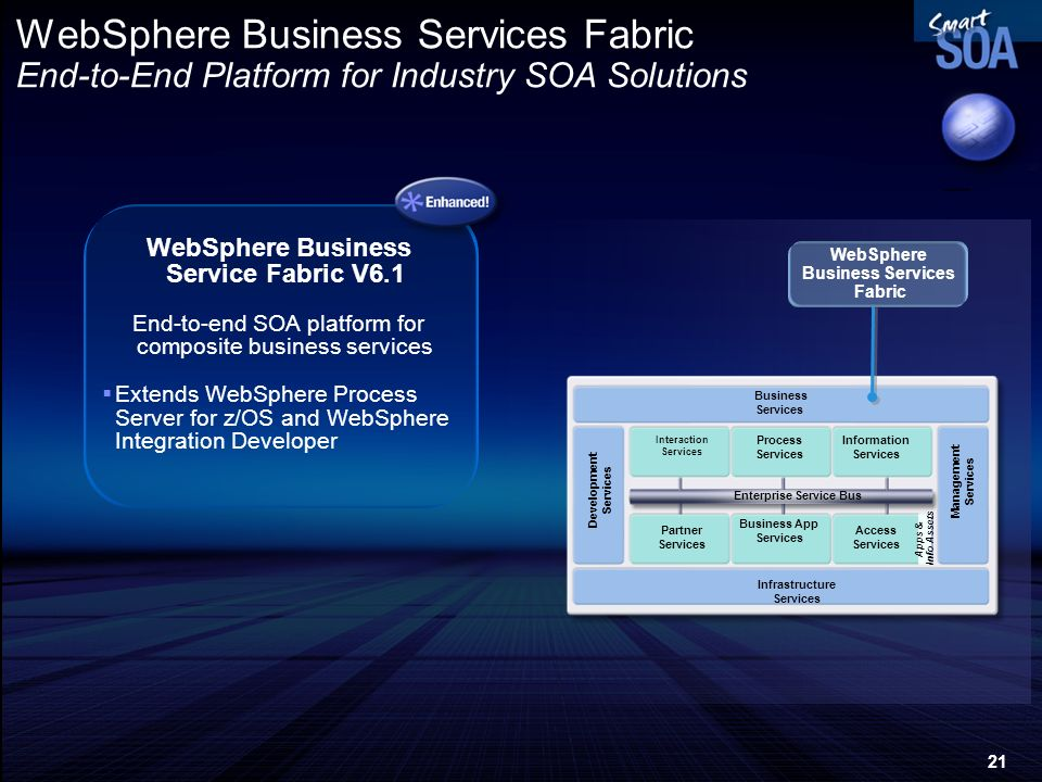 WebSphere Business Service Fabric V6.1