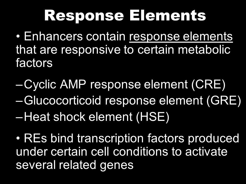 Response Elements Enhancers contain response elements that are responsive to certain metabolic factors.