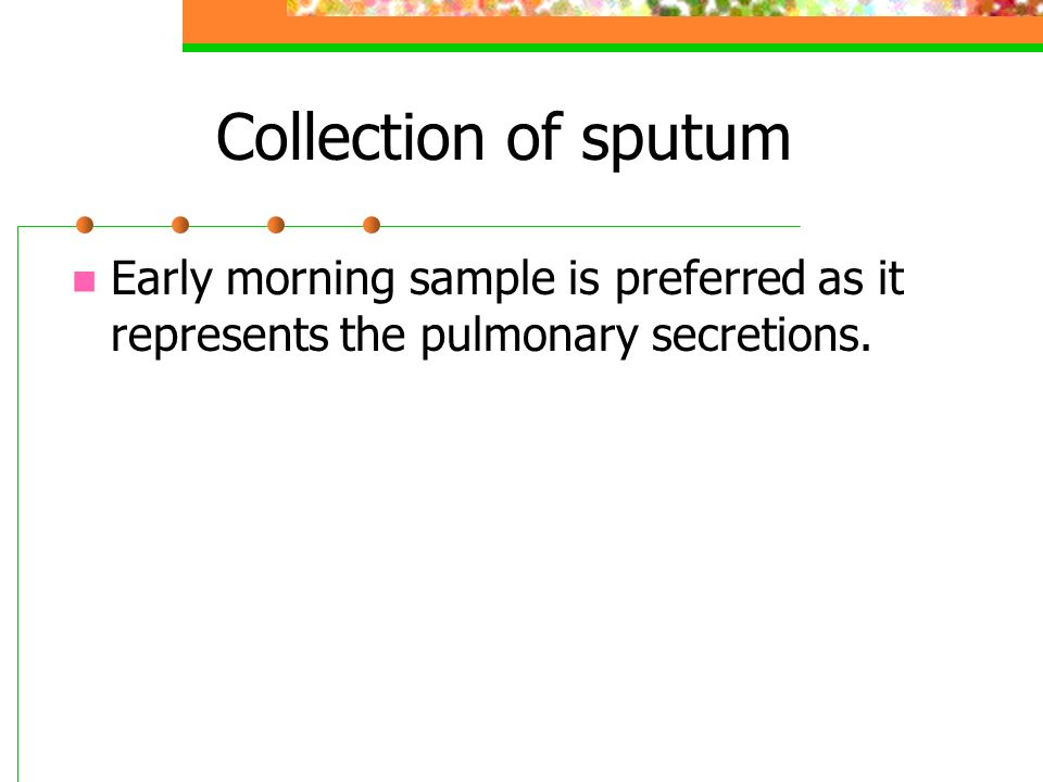 Collection of sputum Early morning sample is preferred as it represents the pulmonary secretions.