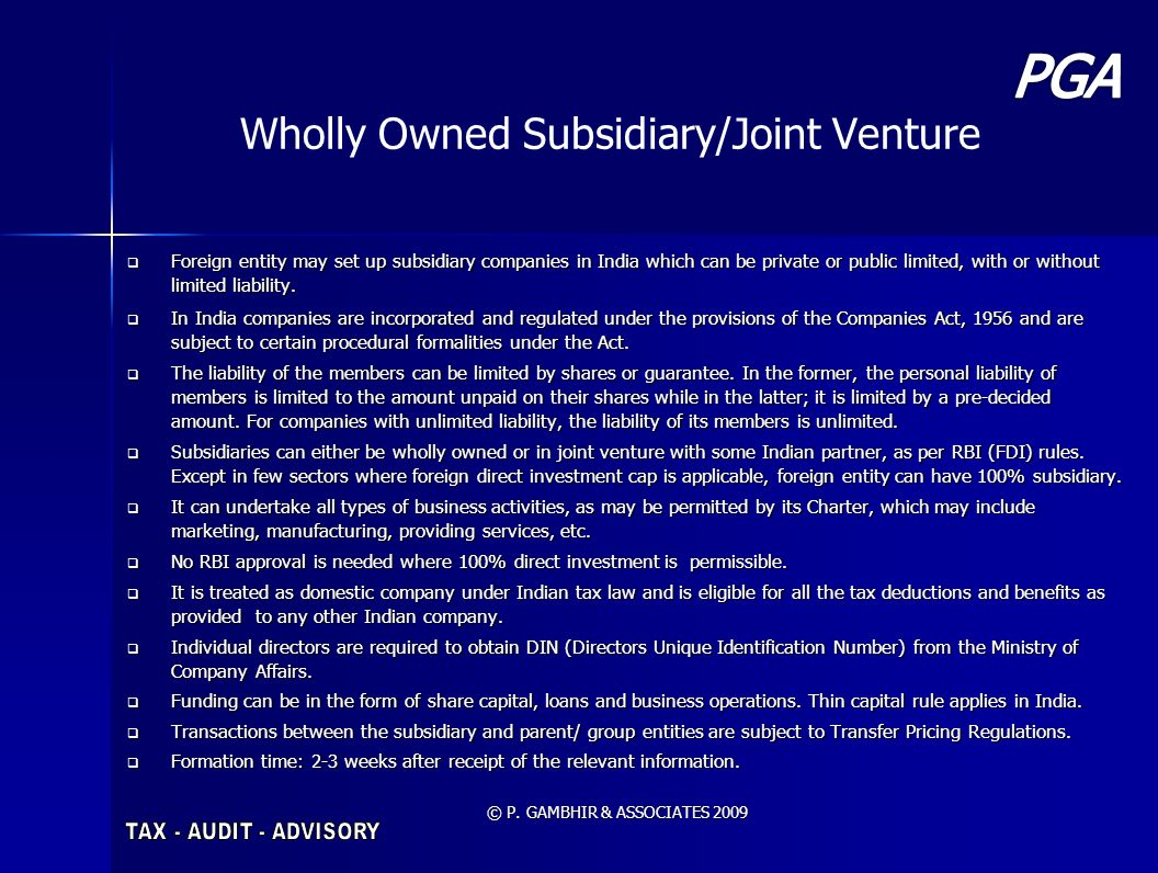 Wholly Owned Subsidiary/Joint Venture
